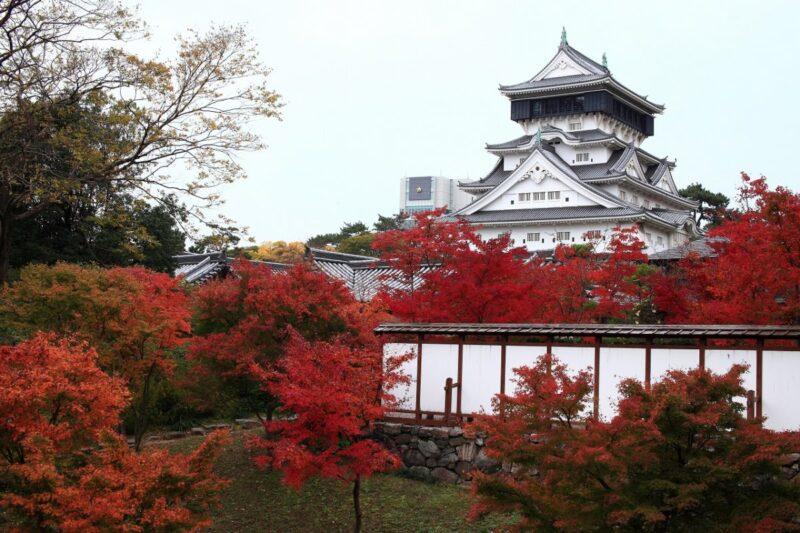 Kokura Castle in fall