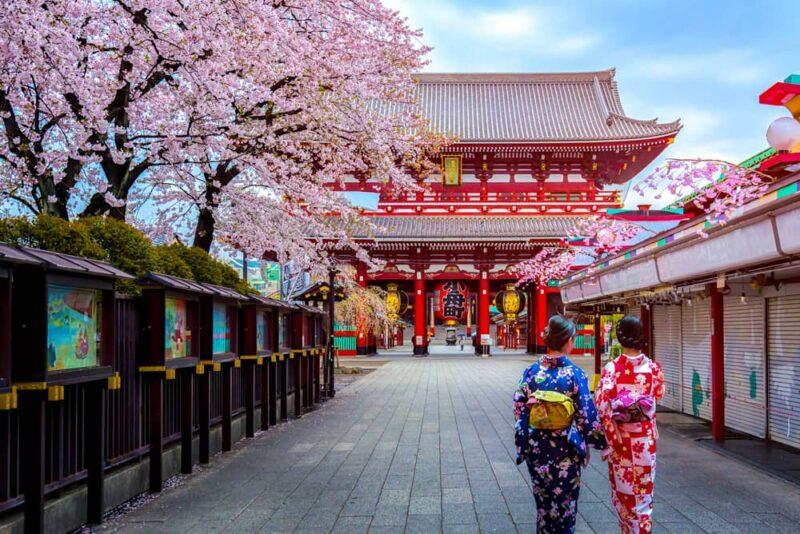 two-geishas-wearing-tradition-japanese-kimono